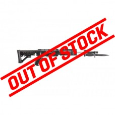 ArchAngel Conversion Rifle Stock for Ruger® 10/22 - Black